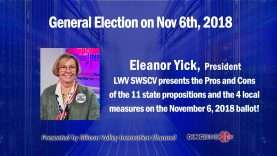 Eleanor Yick Banner newest