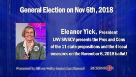 Eleanor Yick's speech about General Election on Nov. 6th,2018